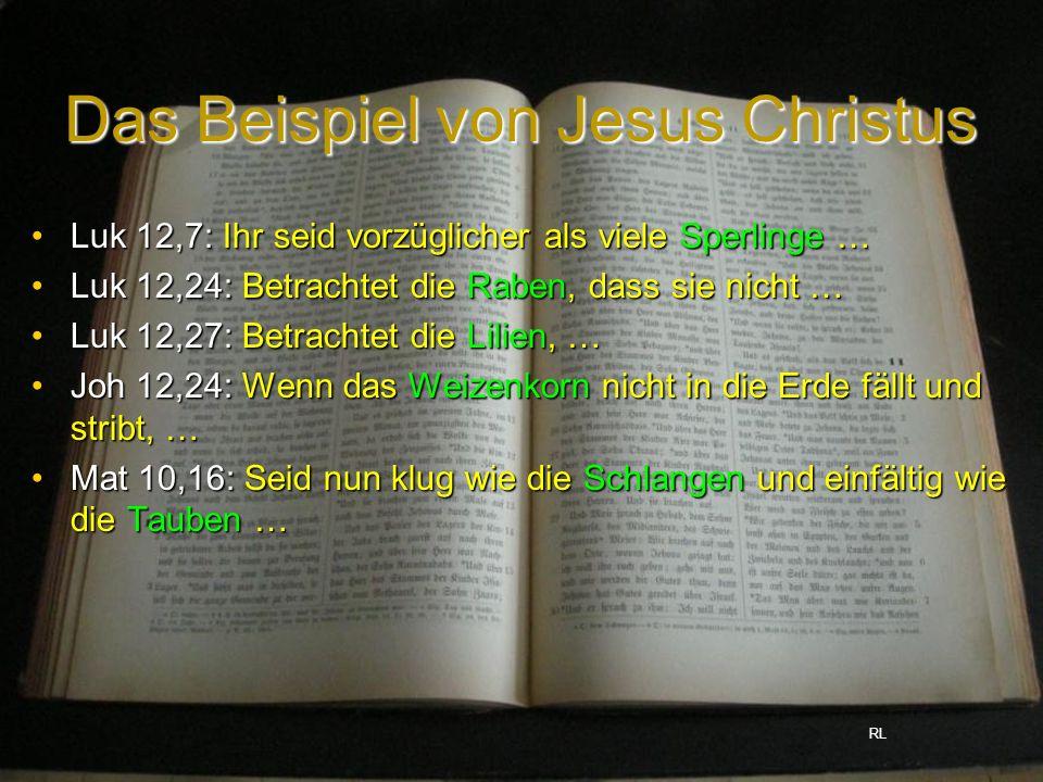 Das Beispiel von Jesus Christus Luk 12,7: Ihr seid vorzüglicher als viele Sperlinge …Luk 12,7: Ihr seid vorzüglicher als viele Sperlinge … Luk 12,24: Betrachtet die Raben, dass sie nicht …Luk 12,24: Betrachtet die Raben, dass sie nicht … Luk 12,27: Betrachtet die Lilien, …Luk 12,27: Betrachtet die Lilien, … Joh 12,24: Wenn das Weizenkorn nicht in die Erde fällt und stribt, …Joh 12,24: Wenn das Weizenkorn nicht in die Erde fällt und stribt, … Mat 10,16: Seid nun klug wie die Schlangen und einfältig wie die Tauben …Mat 10,16: Seid nun klug wie die Schlangen und einfältig wie die Tauben … RL