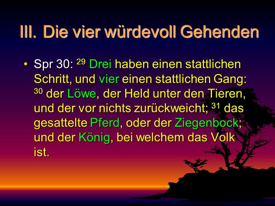 III. Die vier würdevoll Gehenden Spr 30: 29 Drei haben einen stattlichen Schritt, und vier einen stattlichen Gang: 30 der Löwe, der Held unter den Tie