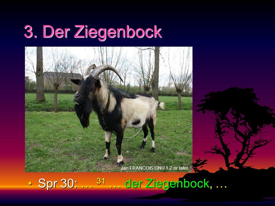 3. Der Ziegenbock Jan FRANCOIS GNU 1.2 or later Spr 30: … 31 … der Ziegenbock, …Spr 30: … 31 … der Ziegenbock, …