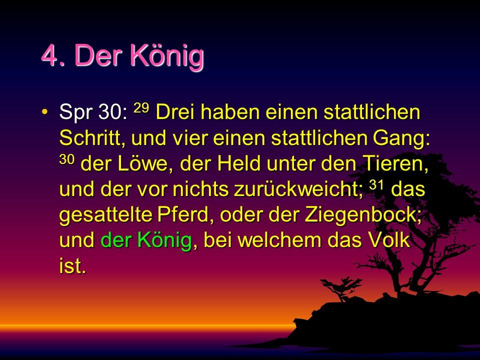 4. Der König Spr 30: 29 Drei haben einen stattlichen Schritt, und vier einen stattlichen Gang: 30 der Löwe, der Held unter den Tieren, und der vor nic