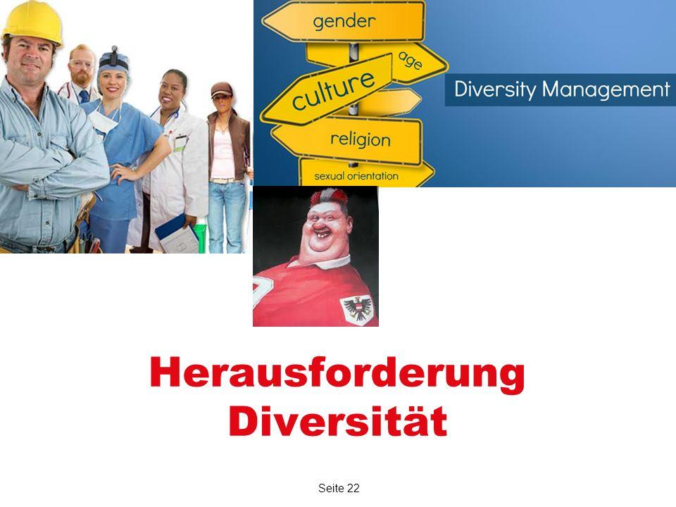 Seite 22 Herausforderung Diversität