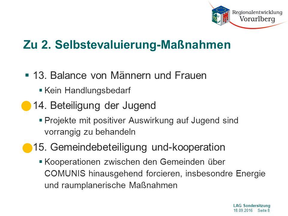 Zu 2. Selbstevaluierung-Maßnahmen  13.