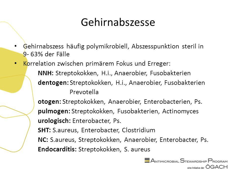 Gehirnabszesse Gehirnabszess häufig polymikrobiell, Abszesspunktion steril in 9- 63% der Fälle Korrelation zwischen primärem Fokus und Erreger: NNH: Streptokokken, H.i., Anaerobier, Fusobakterien dentogen: Streptokokken, H.i., Anaerobier, Fusobakterien Prevotella otogen: Streptokokken, Anaerobier, Enterobacterien, Ps.
