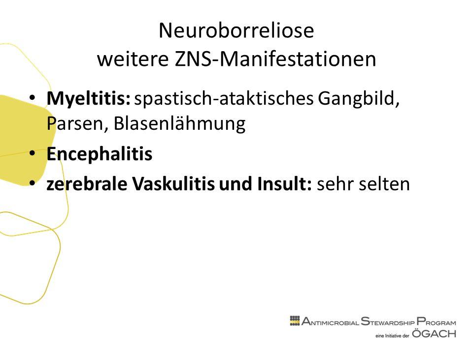 Neuroborreliose weitere ZNS-Manifestationen Myeltitis: spastisch-ataktisches Gangbild, Parsen, Blasenlähmung Encephalitis zerebrale Vaskulitis und Insult: sehr selten