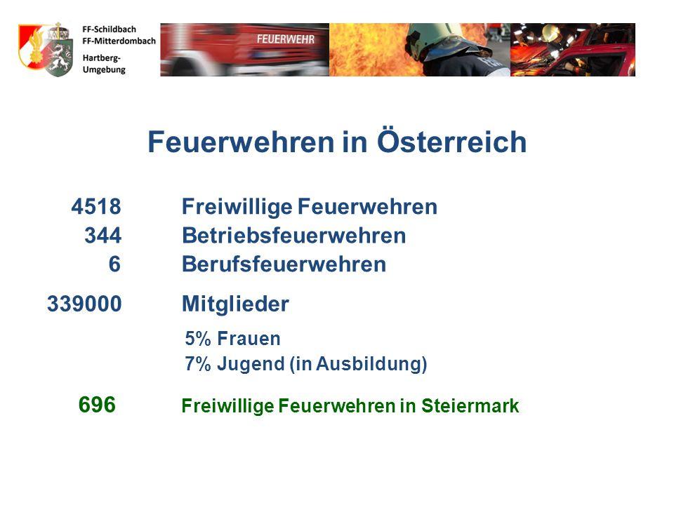 Freiwillige Feuerwehren Freiwilligenquote [%] Schweiz99,5% Österreich 99,1% Deutschland97,6% USA75,3% Italien46,5% Großbritannien 2,2%