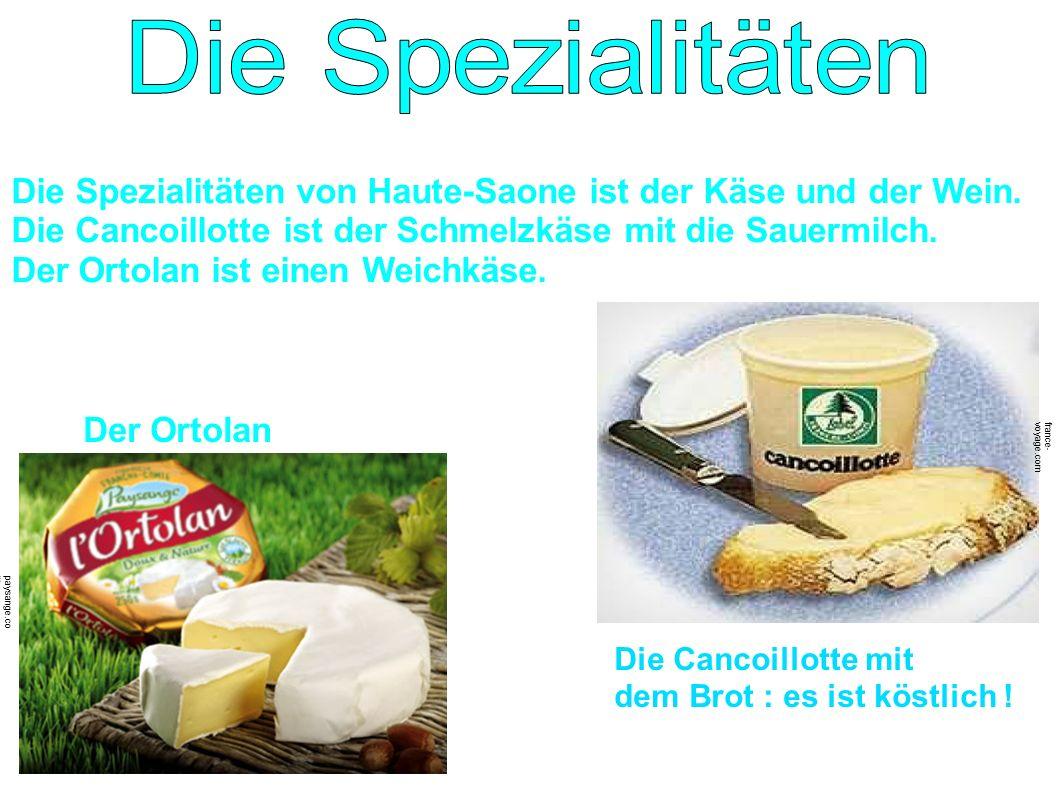 Die Spezialitäten von Haute-Saone ist der Käse und der Wein. Die Cancoillotte ist der Schmelzkäse mit die Sauermilch. Der Ortolan ist einen Weichkäse.