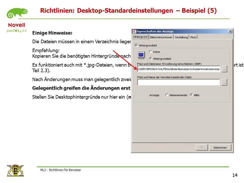 """paed M L ® 3.0 14 ML3 - Richtlinien für Benutzer Richtlinien: Desktop-Standardeinstellungen – Beispiel (5) Einige Hinweise: Die Dateien müssen in einem Verzeichnis liegen, auf das """"Schueler Zugriff hat."""