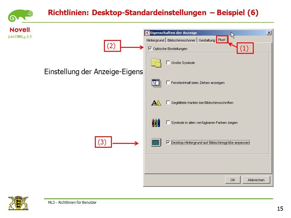paed M L ® 3.0 15 ML3 - Richtlinien für Benutzer Richtlinien: Desktop-Standardeinstellungen – Beispiel (6) Einstellung der Anzeige-Eigenschaften (1) (2) (3)