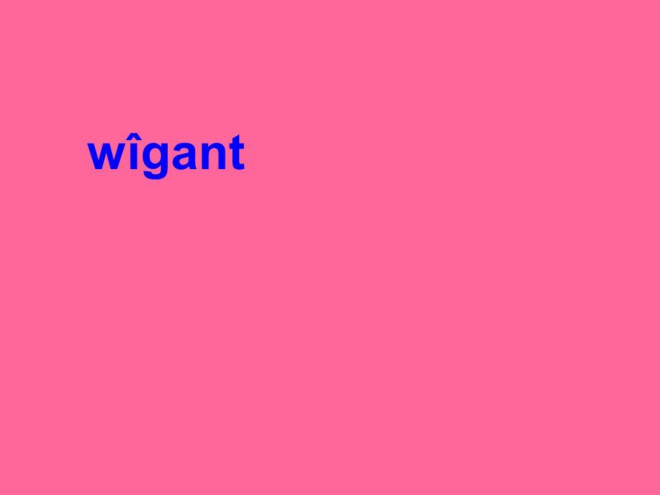 wîgant