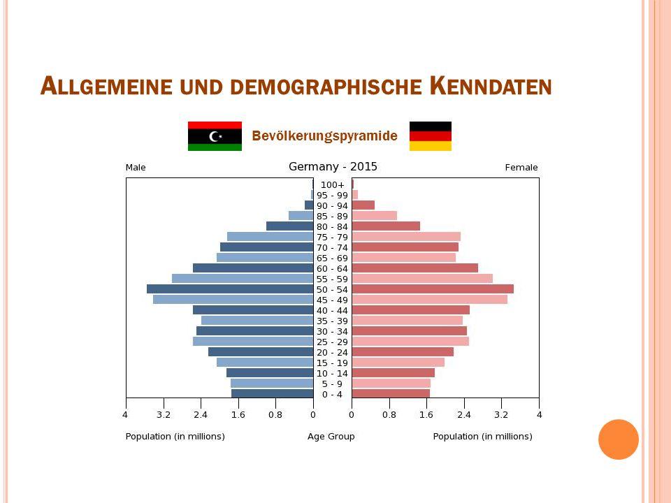 A LLGEMEINE UND DEMOGRAPHISCHE K ENNDATEN Bevölkerungspyramide