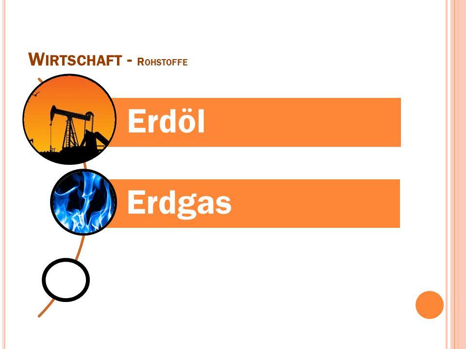 W IRTSCHAFT - R OHSTOFFE Erdöl Erdgas
