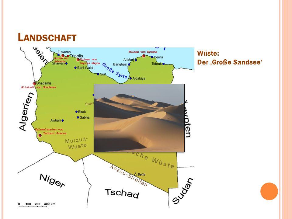 L ANDSCHAFT Wüste: Der 'Große Sandsee'