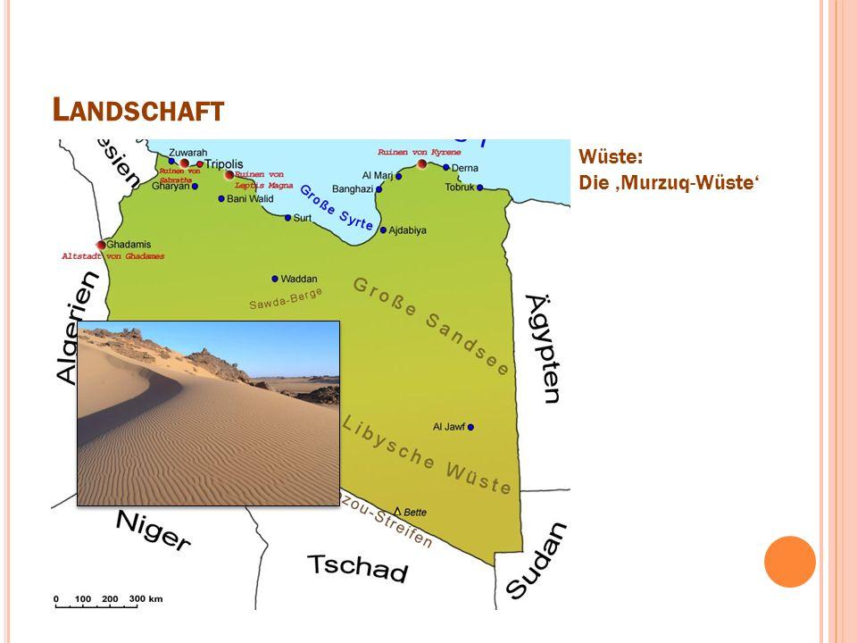 L ANDSCHAFT Wüste: Die 'Murzuq-Wüste'