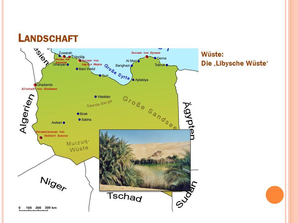 L ANDSCHAFT Wüste: Die 'Libysche Wüste'