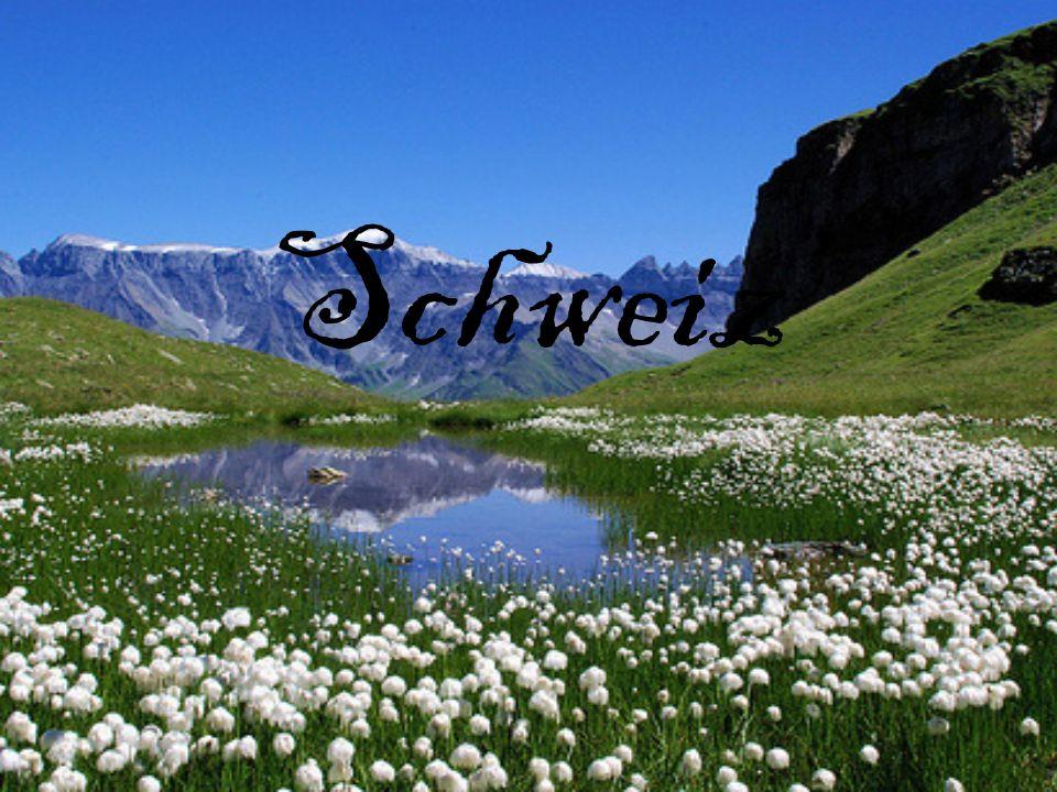 Die Schweiz ist der kleine Staat.