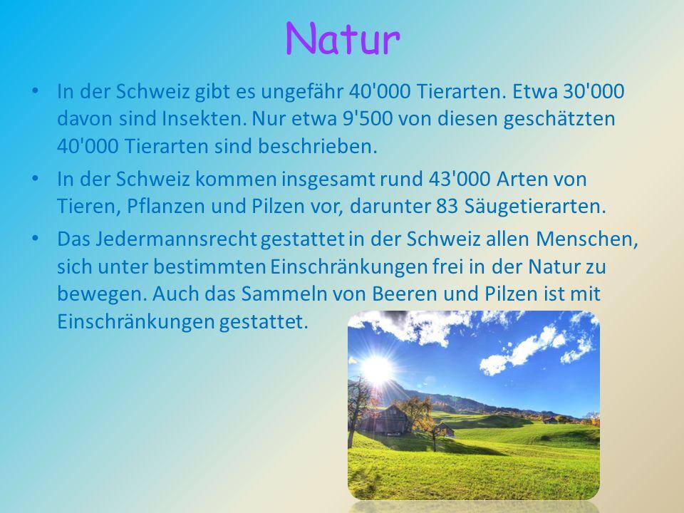 Natur In der Schweiz gibt es ungefähr 40'000 Tierarten. Etwa 30'000 davon sind Insekten. Nur etwa 9'500 von diesen geschätzten 40'000 Tierarten sind b