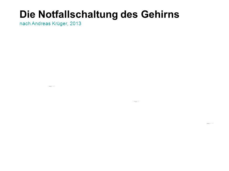 Die Notfallschaltung des Gehirns nach Andreas Krüger, 2013