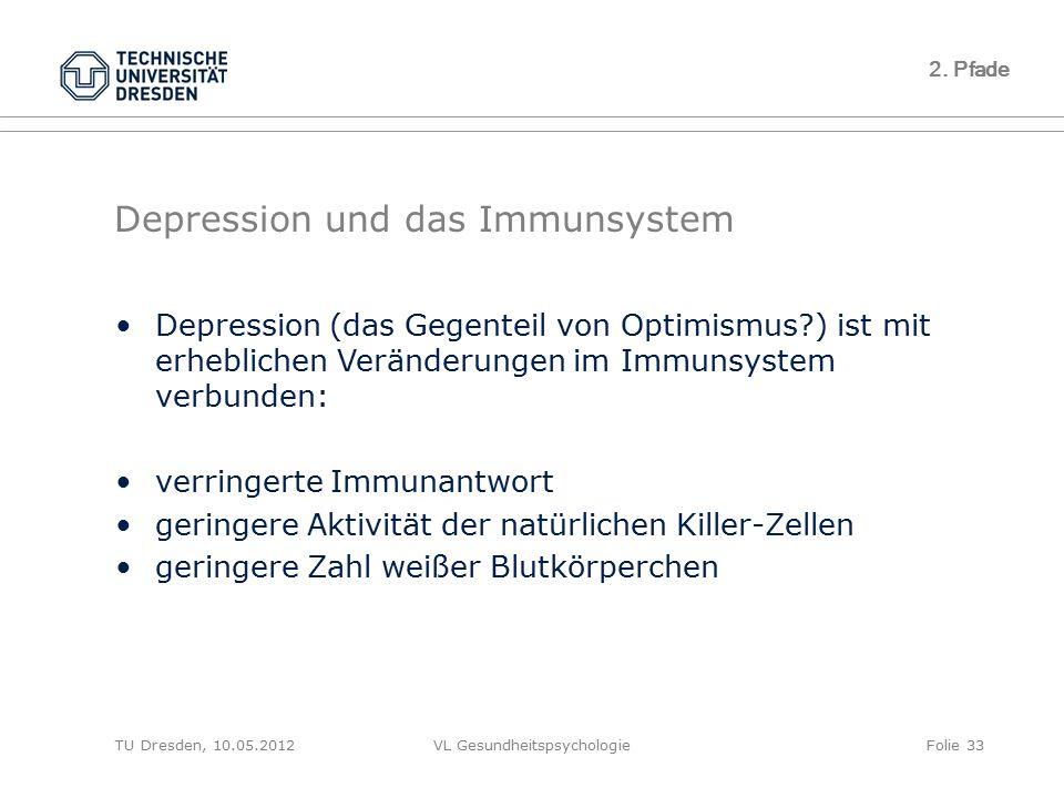 TU Dresden, 10.05.2012VL GesundheitspsychologieFolie 33 2. Pfade Depression und das Immunsystem Depression (das Gegenteil von Optimismus?) ist mit erh