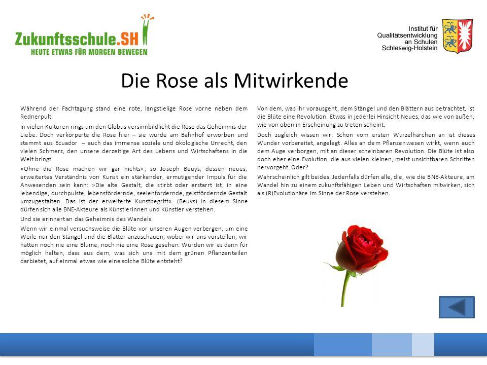 Die Rose als Mitwirkende Während der Fachtagung stand eine rote, langstielige Rose vorne neben dem Rednerpult.