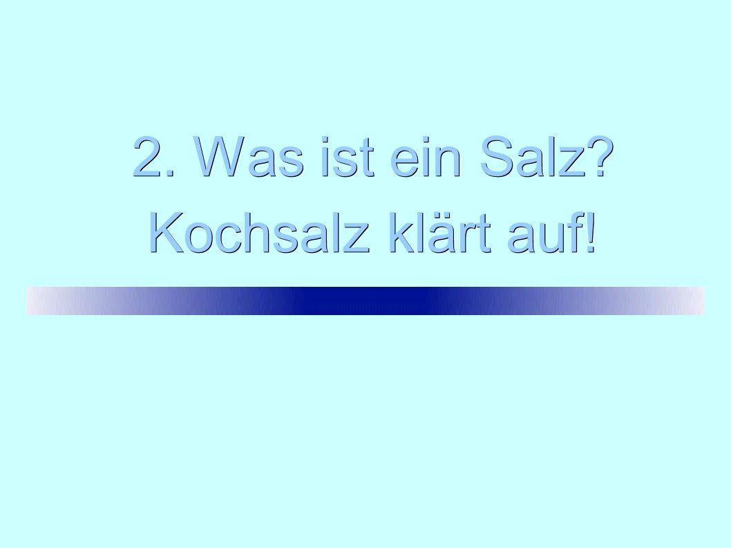 2. Was ist ein Salz? Kochsalz klärt auf!