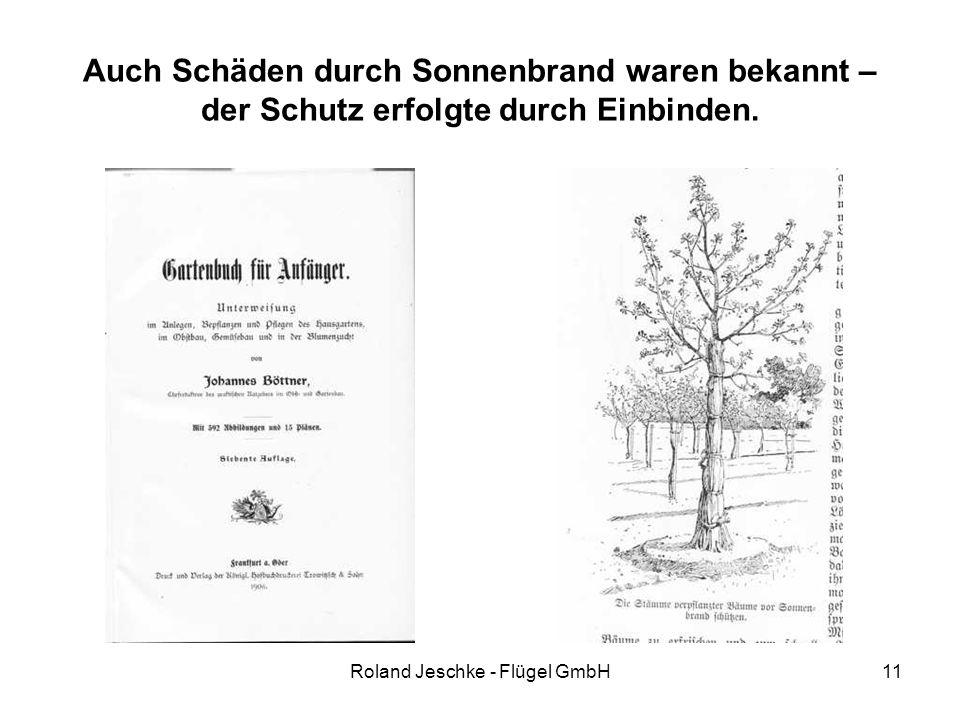 Roland Jeschke - Flügel GmbH11 Auch Schäden durch Sonnenbrand waren bekannt – der Schutz erfolgte durch Einbinden.