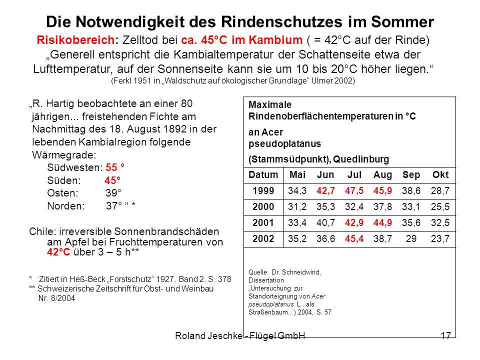 """Roland Jeschke - Flügel GmbH17 Die Notwendigkeit des Rindenschutzes im Sommer """"R. Hartig beobachtete an einer 80 jährigen... freistehenden Fichte am N"""