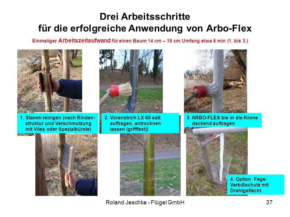 Roland Jeschke - Flügel GmbH37 Drei Arbeitsschritte für die erfolgreiche Anwendung von Arbo-Flex 1. Stamm reinigen (nach Rinden- struktur und Verschmu
