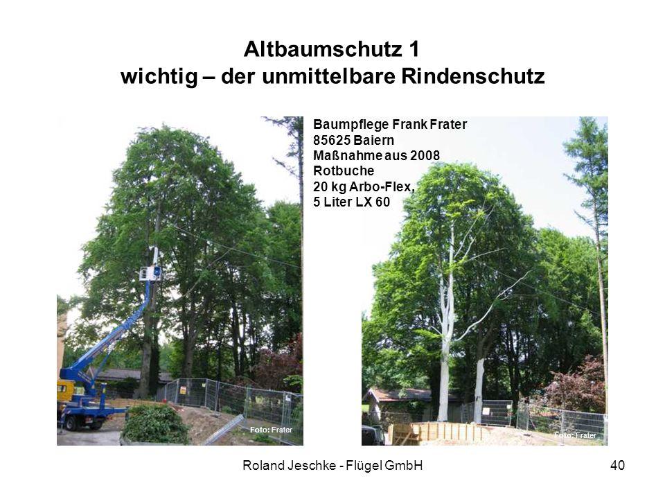 Roland Jeschke - Flügel GmbH40 Altbaumschutz 1 wichtig – der unmittelbare Rindenschutz Baumpflege Frank Frater 85625 Baiern Maßnahme aus 2008 Rotbuche