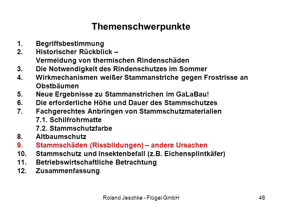 Roland Jeschke - Flügel GmbH46 Themenschwerpunkte 1.Begriffsbestimmung 2.Historischer Rückblick – Vermeidung von thermischen Rindenschäden 3.Die Notwendigkeit des Rindenschutzes im Sommer 4.