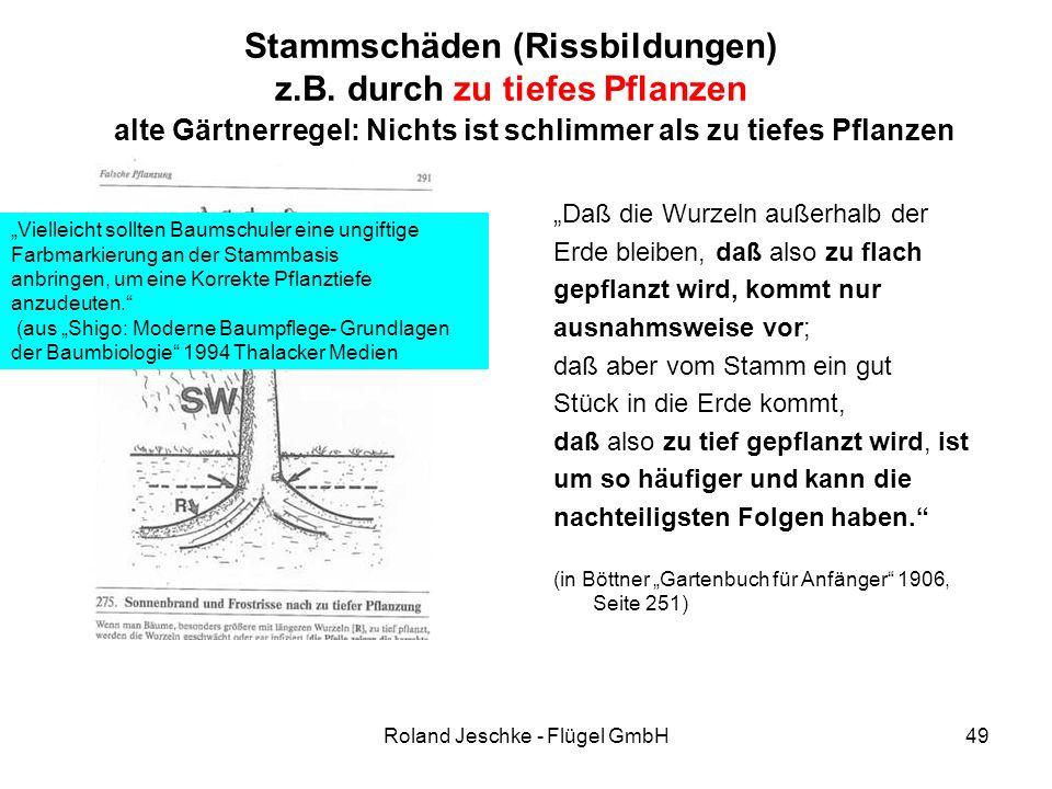 """Roland Jeschke - Flügel GmbH49 Stammschäden (Rissbildungen) z.B. durch zu tiefes Pflanzen """"Daß die Wurzeln außerhalb der Erde bleiben, daß also zu fla"""