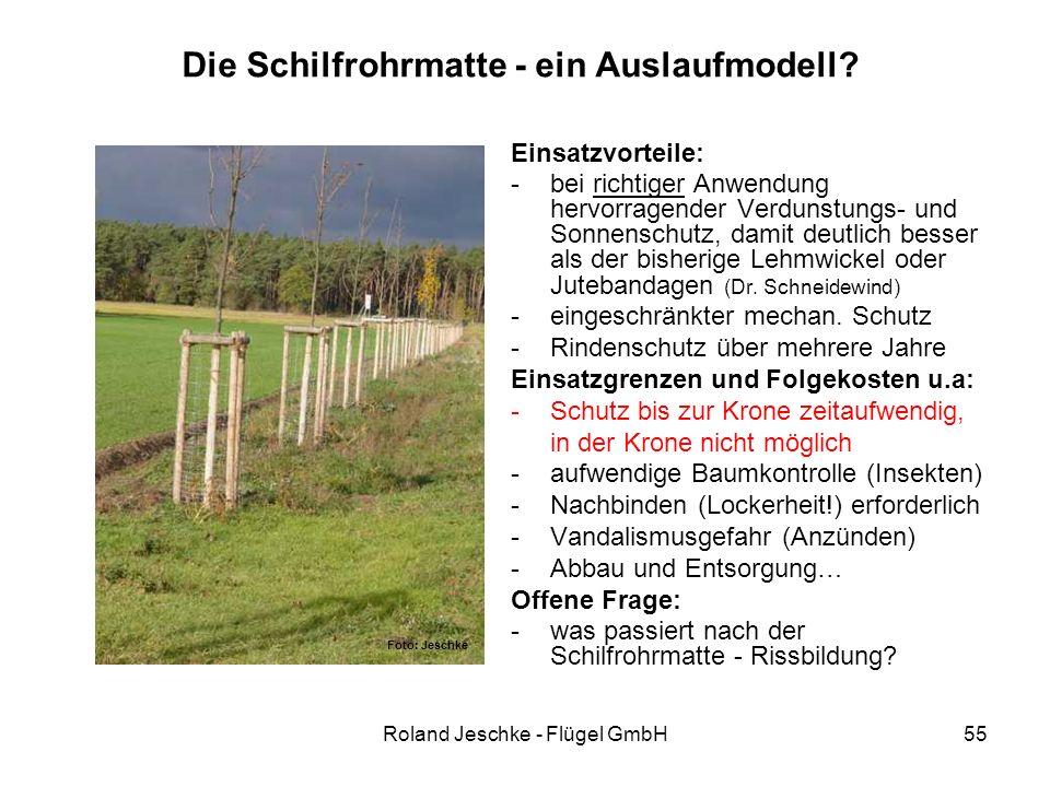 Roland Jeschke - Flügel GmbH55 Die Schilfrohrmatte - ein Auslaufmodell? Einsatzvorteile: -bei richtiger Anwendung hervorragender Verdunstungs- und Son