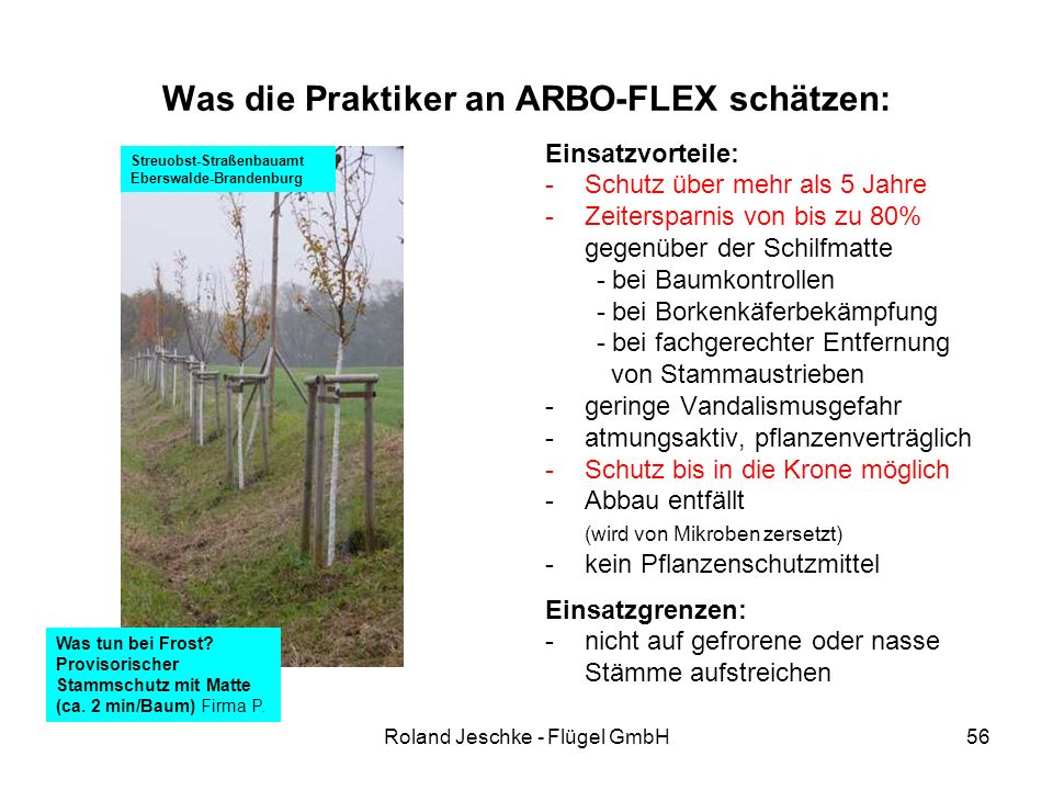 Roland Jeschke - Flügel GmbH56 Was die Praktiker an ARBO-FLEX schätzen: Einsatzvorteile: -Schutz über mehr als 5 Jahre -Zeitersparnis von bis zu 80% gegenüber der Schilfmatte - bei Baumkontrollen - bei Borkenkäferbekämpfung - bei fachgerechter Entfernung von Stammaustrieben -geringe Vandalismusgefahr -atmungsaktiv, pflanzenverträglich -Schutz bis in die Krone möglich -Abbau entfällt (wird von Mikroben zersetzt) -kein Pflanzenschutzmittel Einsatzgrenzen: -nicht auf gefrorene oder nasse Stämme aufstreichen Streuobst-Straßenbauamt Eberswalde-Brandenburg Was tun bei Frost.