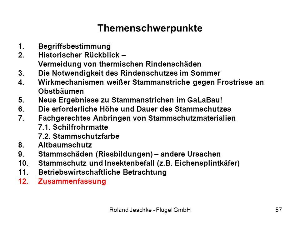 Roland Jeschke - Flügel GmbH57 Themenschwerpunkte 1.Begriffsbestimmung 2.Historischer Rückblick – Vermeidung von thermischen Rindenschäden 3.Die Notwendigkeit des Rindenschutzes im Sommer 4.