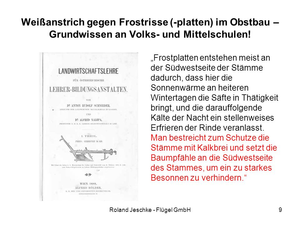 """Roland Jeschke - Flügel GmbH9 Weißanstrich gegen Frostrisse (-platten) im Obstbau – Grundwissen an Volks- und Mittelschulen! """"Frostplatten entstehen m"""