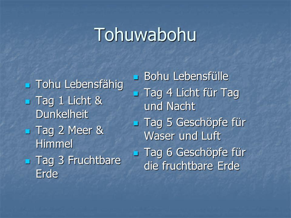 Meistens das Resultat vom Gericht Jer 4,23 Tohuwabohu Meistens das Resultat vom Gericht Jer 4,23 Tohu wüst Einsame Wüste Tohu wüst Einsame Wüste Tag 1 Tag 1 Tag 2 Tag 2 Tag 3 Tag 3 Bohu leer Leer am Leben Bohu leer Leer am Leben Tag 4 Tag 4 Tag 5 Tag 5 Tag 6 Tag 6