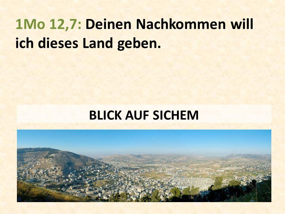 1Mo 12,7: Deinen Nachkommen will ich dieses Land geben. BLICK AUF SICHEM