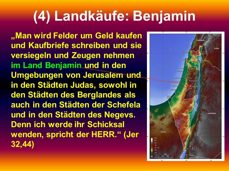 """(4) Landkäufe: Benjamin """"Man wird Felder um Geld kaufen und Kaufbriefe schreiben und sie versiegeln und Zeugen nehmen im Land Benjamin und in den Umgebungen von Jerusalem und in den Städten Judas, sowohl in den Städten des Berglandes als auch in den Städten der Schefela und in den Städten des Negevs."""