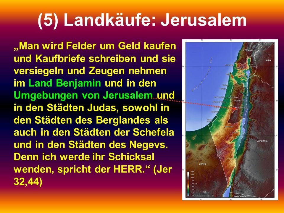 """(5) Landkäufe: Jerusalem """"Man wird Felder um Geld kaufen und Kaufbriefe schreiben und sie versiegeln und Zeugen nehmen im Land Benjamin und in den Umg"""