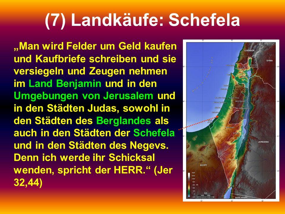 """(7) Landkäufe: Schefela """"Man wird Felder um Geld kaufen und Kaufbriefe schreiben und sie versiegeln und Zeugen nehmen im Land Benjamin und in den Umgebungen von Jerusalem und in den Städten Judas, sowohl in den Städten des Berglandes als auch in den Städten der Schefela und in den Städten des Negevs."""