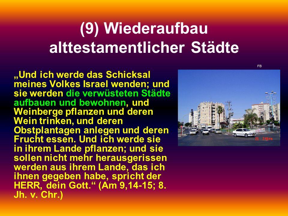 """(9) Wiederaufbau alttestamentlicher Städte """"Und ich werde das Schicksal meines Volkes Israel wenden; und sie werden die verwüsteten Städte aufbauen und bewohnen, und Weinberge pflanzen und deren Wein trinken, und deren Obstplantagen anlegen und deren Frucht essen."""