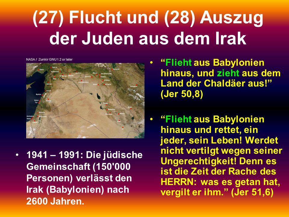 (27) Flucht und (28) Auszug der Juden aus dem Irak 1941 – 1991: Die jüdische Gemeinschaft (150 000 Personen) verlässt den Irak (Babylonien) nach 2600 Jahren.