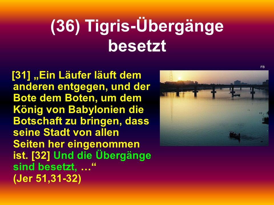 """(36) Tigris-Übergänge besetzt [31] """"Ein Läufer läuft dem anderen entgegen, und der Bote dem Boten, um dem König von Babylonien die Botschaft zu bringe"""