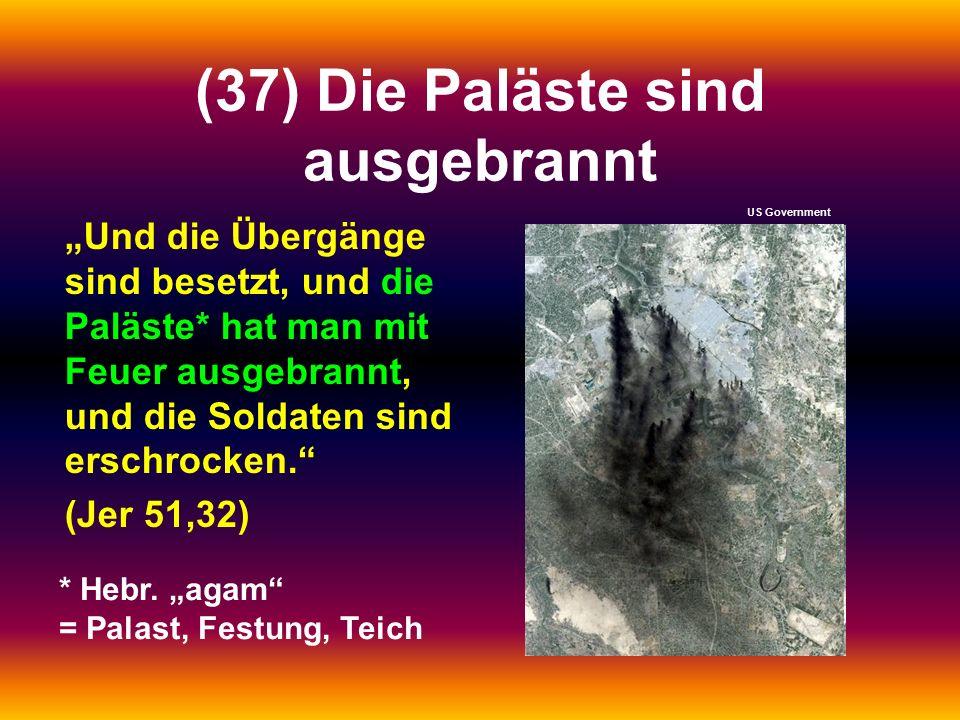"""(37) Die Paläste sind ausgebrannt """"Und die Übergänge sind besetzt, und die Paläste* hat man mit Feuer ausgebrannt, und die Soldaten sind erschrocken. (Jer 51,32) * Hebr."""