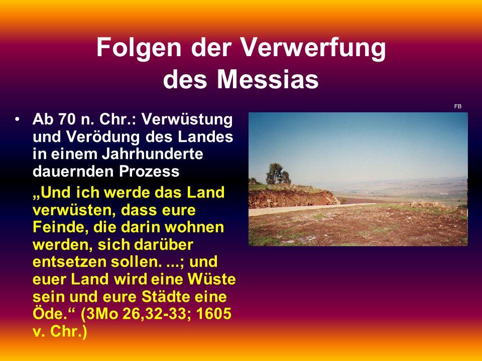 """Folgen der Verwerfung des Messias Ab 70 n. Chr.: Verwüstung und Verödung des Landes in einem Jahrhunderte dauernden Prozess """"Und ich werde das Land ve"""