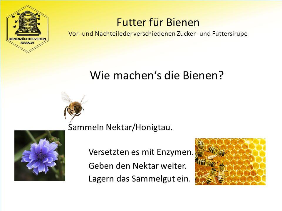 Futter für Bienen Vor- und Nachteileder verschiedenen Zucker- und Futtersirupe Wie machen's die Bienen.