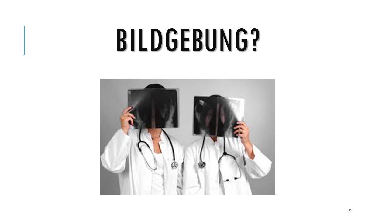BILDGEBUNG 35