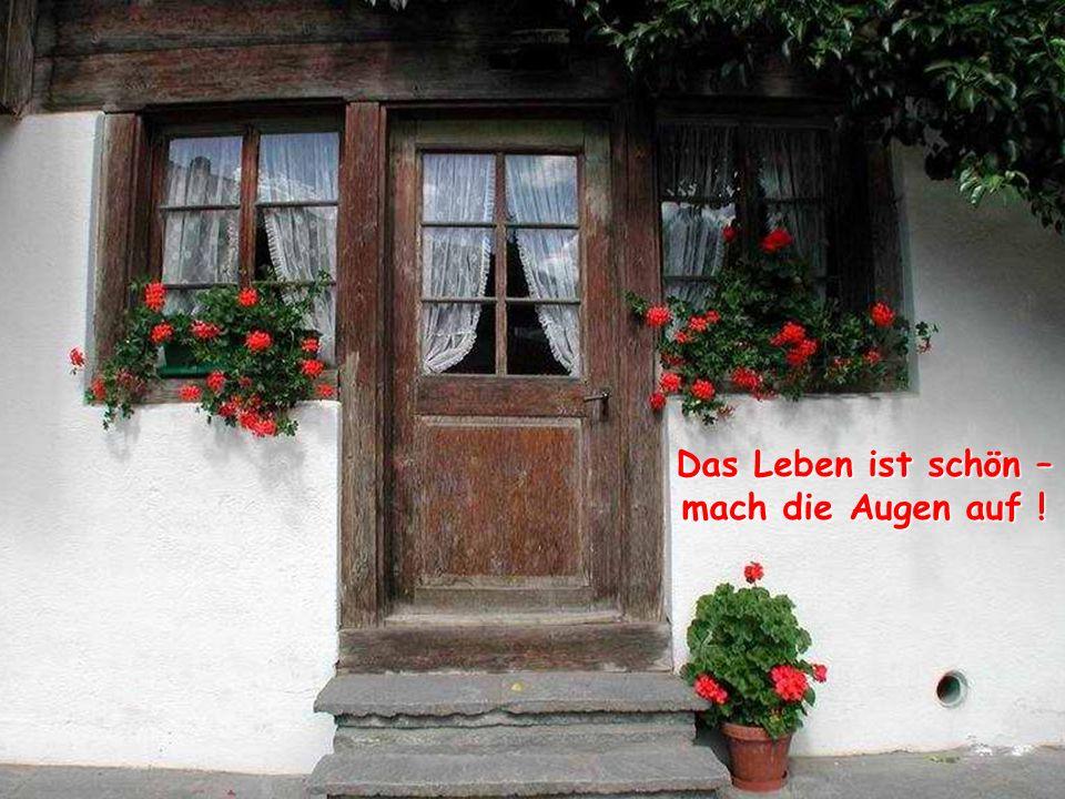 verteilt durch www.funmail2u.dewww.funmail2u.de Das Leben ist Freundschaft – pflege sie !