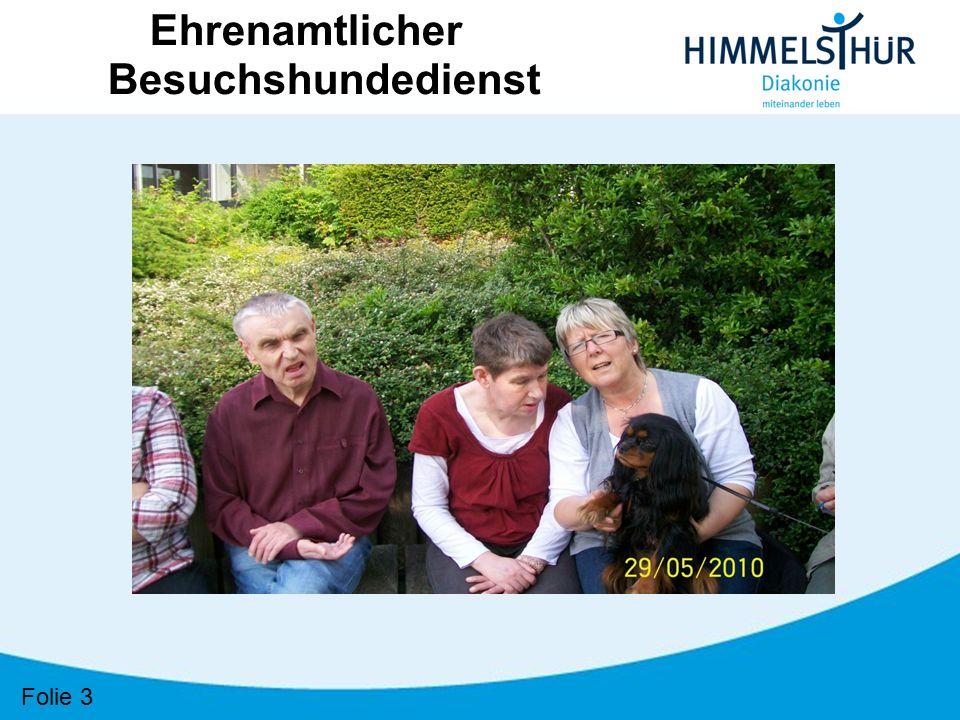 """Folie 34 Ehrenamtlicher Besuchshundedienst """"Tiere helfen Menschen e.v. Bundesweites Netzwerk von 100 Regionalgruppen mit 1.000 ehrenamtlichen Helfern"""