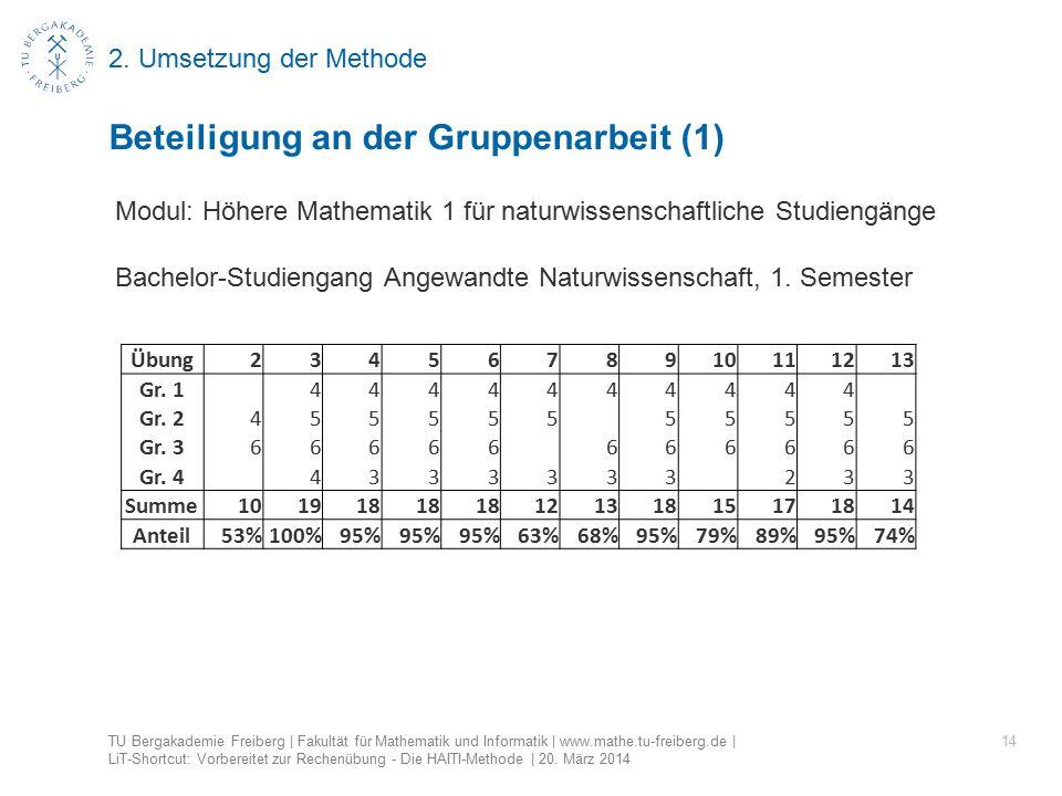 2. Umsetzung der Methode 14 Beteiligung an der Gruppenarbeit (1) TU Bergakademie Freiberg | Fakultät für Mathematik und Informatik | www.mathe.tu-frei