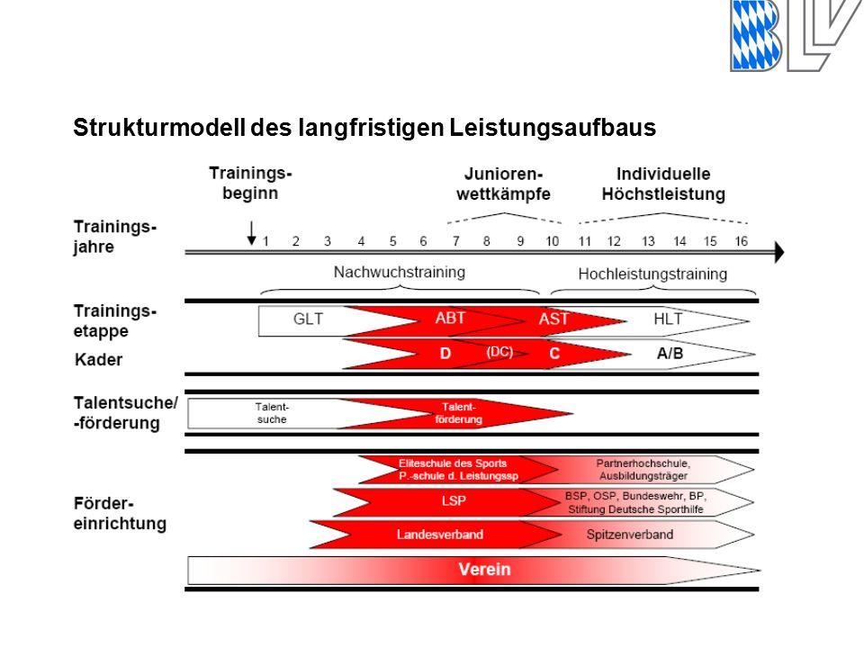 Strukturmodell des langfristigen Leistungsaufbaus